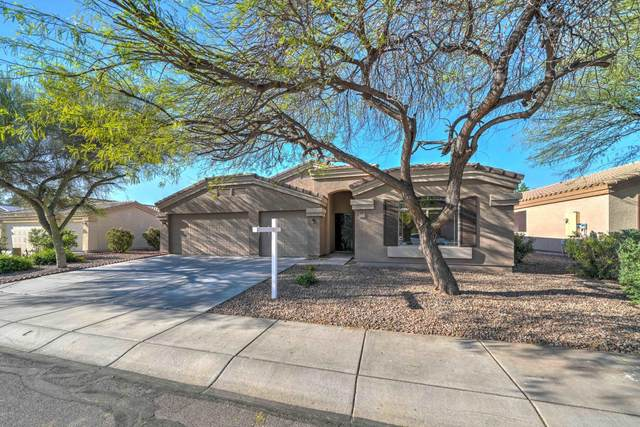 549 W Rattlesnake Place, Casa Grande, AZ 85122 (MLS #6064218) :: Keller Williams Realty Phoenix