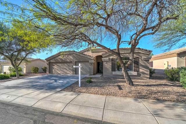 549 W Rattlesnake Place, Casa Grande, AZ 85122 (MLS #6064218) :: Conway Real Estate