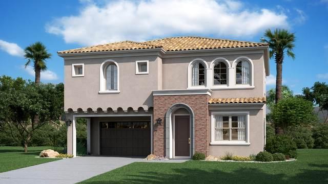 705 N Bay Drive, Gilbert, AZ 85233 (MLS #6064237) :: Keller Williams Realty Phoenix