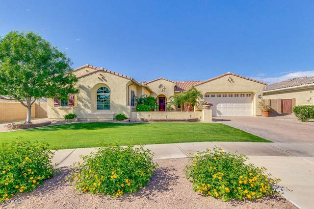 20208 E Via Del Oro, Queen Creek, AZ 85142 (MLS #6064242) :: Keller Williams Realty Phoenix