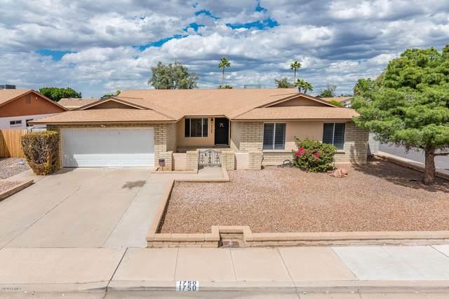 1750 E Intrepid Avenue, Mesa, AZ 85204 (MLS #6064256) :: Keller Williams Realty Phoenix