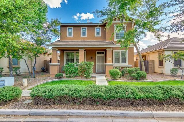 3745 E Larson Lane, Gilbert, AZ 85295 (MLS #6064295) :: Keller Williams Realty Phoenix