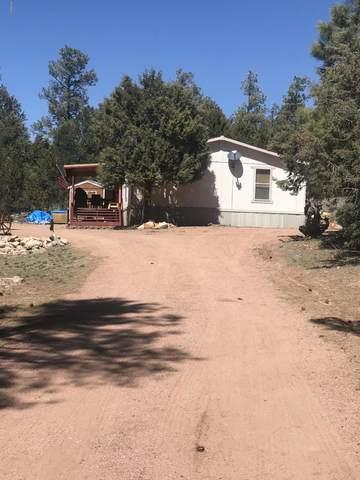2158 Rimview Trail, Overgaard, AZ 85933 (MLS #6064311) :: Brett Tanner Home Selling Team