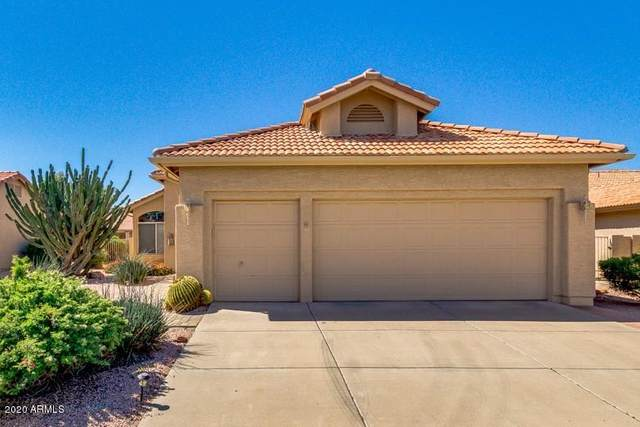 10545 E Hercules Drive, Sun Lakes, AZ 85248 (MLS #6064320) :: Keller Williams Realty Phoenix