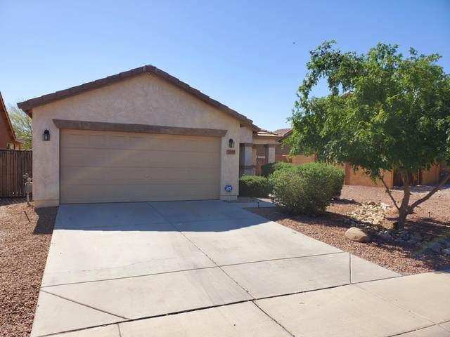 33105 N Roadrunner Lane, Queen Creek, AZ 85142 (MLS #6064380) :: Brett Tanner Home Selling Team
