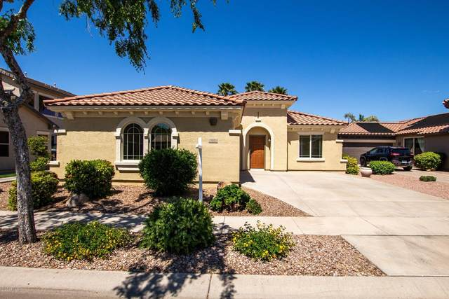 972 E Waterview Place, Chandler, AZ 85249 (MLS #6064436) :: The Property Partners at eXp Realty