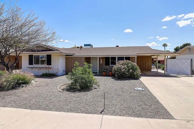 10807 W Canterbury Drive, Sun City, AZ 85351 (MLS #6064487) :: Brett Tanner Home Selling Team