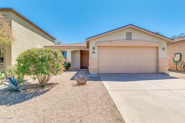 907 E Cowboy Cove Trail, San Tan Valley, AZ 85143 (MLS #6064498) :: Brett Tanner Home Selling Team