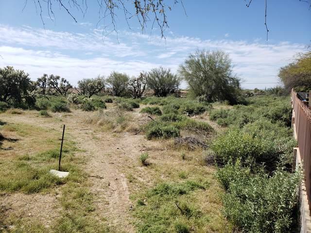 6968 S Tum Tum Court, Gold Canyon, AZ 85118 (MLS #6064510) :: Nate Martinez Team
