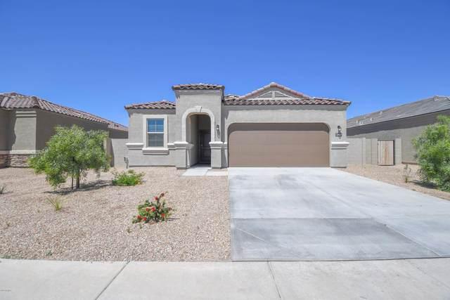 2402 E San Lorenzo Trail, Casa Grande, AZ 85194 (MLS #6064532) :: Devor Real Estate Associates