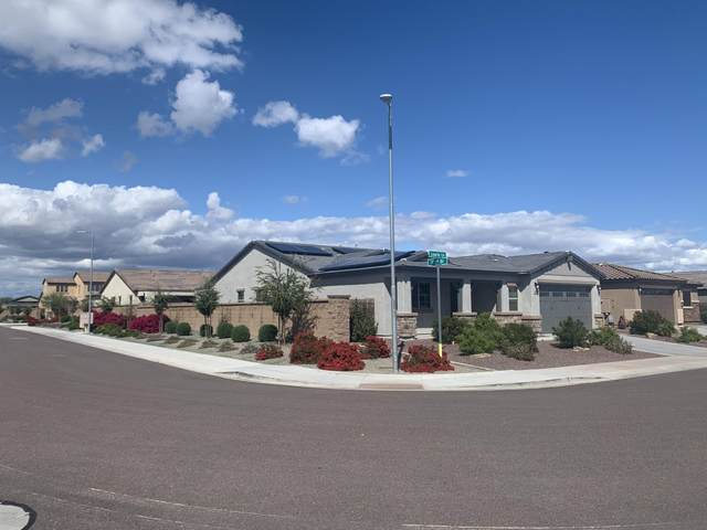 17156 W Laurie Lane, Waddell, AZ 85355 (MLS #6064668) :: Klaus Team Real Estate Solutions