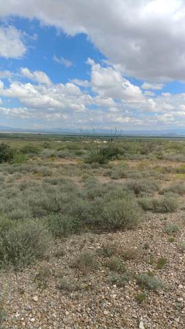 TBD N Noogard Lane, Cochise, AZ 85606 (MLS #6064778) :: Klaus Team Real Estate Solutions