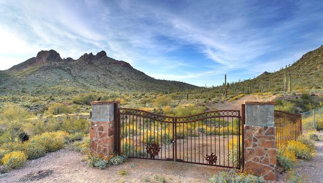 0 N Idaho Road, Apache Junction, AZ 85120 (MLS #6064816) :: Klaus Team Real Estate Solutions