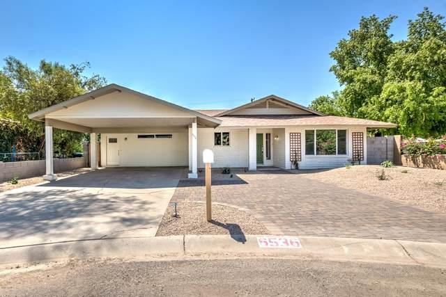 6536 N 11th Avenue, Phoenix, AZ 85013 (MLS #6064823) :: Lux Home Group at  Keller Williams Realty Phoenix