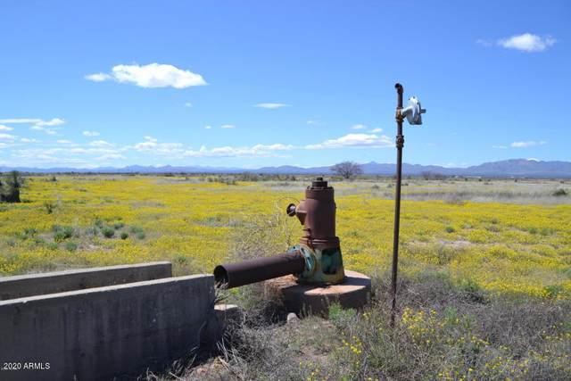 Tbd 318 Ac Highway 191, McNeal, AZ 85617 (MLS #6065009) :: Brett Tanner Home Selling Team