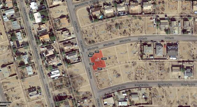 5557 E Shadow Lane, San Tan Valley, AZ 85140 (MLS #6065219) :: The Property Partners at eXp Realty