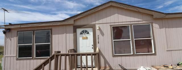 3218 S 339TH Avenue, Tonopah, AZ 85354 (MLS #6065252) :: The Daniel Montez Real Estate Group