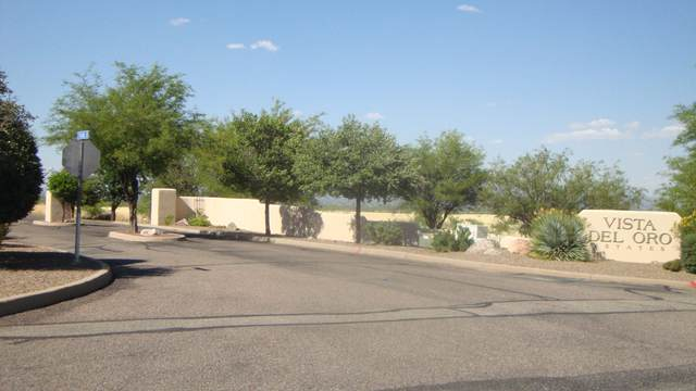Lot 17 S Palisades Drive, Hereford, AZ 85615 (MLS #6065554) :: The Riddle Group