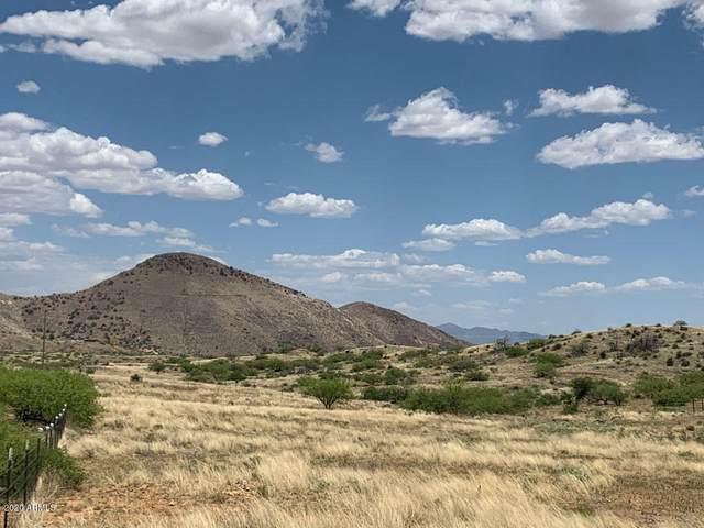 TBD W Copper Bug Road, Pearce, AZ 85625 (MLS #6065613) :: Conway Real Estate