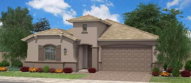 41676 N Kamala Tree Street, Queen Creek, AZ 85140 (MLS #6065637) :: The Property Partners at eXp Realty