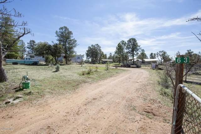 63 S Lanners Lane, Payson, AZ 85541 (#6065768) :: The Josh Berkley Team