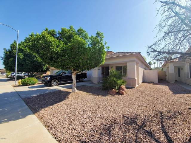 3791 N 141ST Drive, Goodyear, AZ 85395 (MLS #6066011) :: Long Realty West Valley