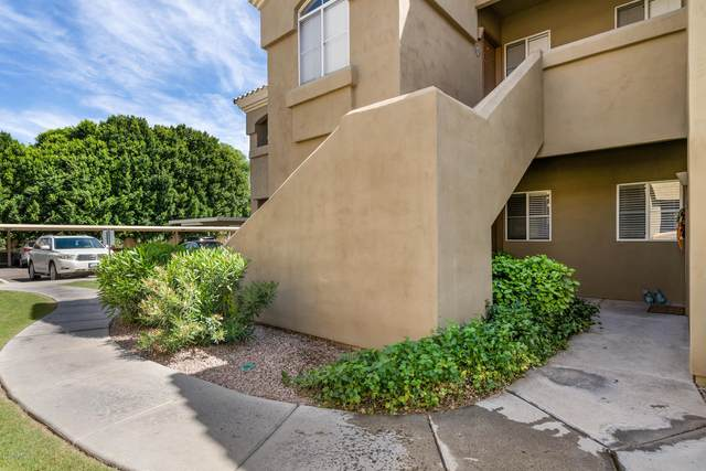 5335 E Shea Boulevard #1084, Scottsdale, AZ 85254 (#6066114) :: The Josh Berkley Team