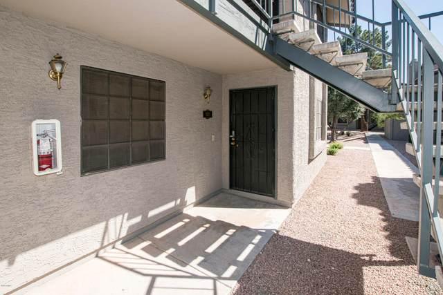 533 W Guadalupe Road #1137, Mesa, AZ 85210 (MLS #6066240) :: CANAM Realty Group