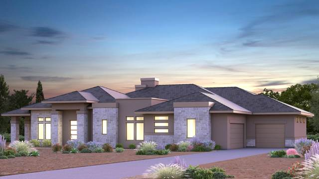 11024 W Dove Roost Road, Queen Creek, AZ 85142 (MLS #6066311) :: The Results Group
