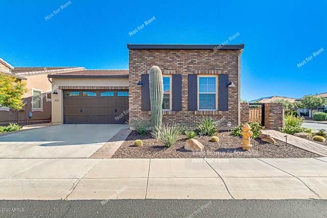 1725 E Verde Boulevard, San Tan Valley, AZ 85140 (MLS #6066314) :: The Property Partners at eXp Realty