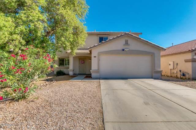 2065 E Shetland Drive, San Tan Valley, AZ 85140 (MLS #6066540) :: The Property Partners at eXp Realty