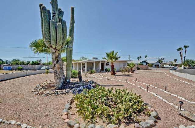 8618 S 16TH Place, Phoenix, AZ 85042 (MLS #6066584) :: Long Realty West Valley