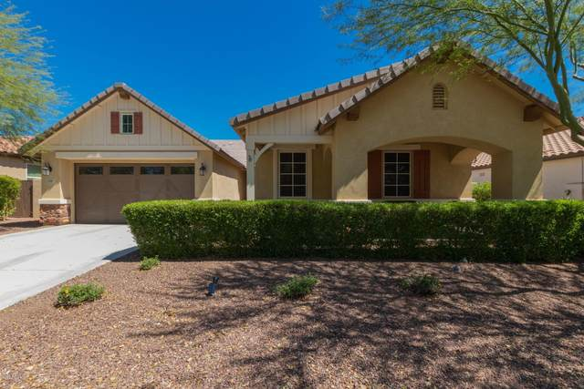 3181 N Springfield Street, Buckeye, AZ 85396 (MLS #6066703) :: The Property Partners at eXp Realty