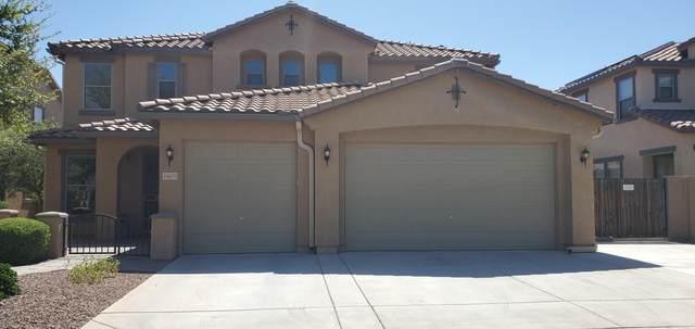 16473 W El Cortez Place, Surprise, AZ 85387 (MLS #6066870) :: Klaus Team Real Estate Solutions