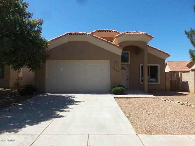 3389 N Camino Perilla, Douglas, AZ 85607 (MLS #6066964) :: Brett Tanner Home Selling Team