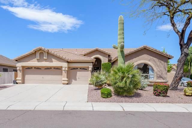 4142 E Spur Drive, Cave Creek, AZ 85331 (MLS #6067014) :: The Daniel Montez Real Estate Group