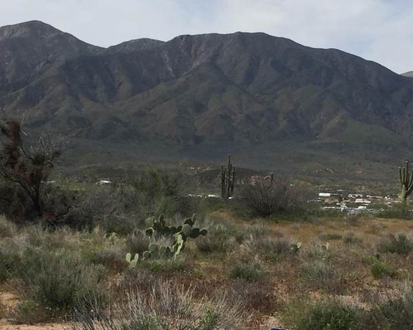 57P N Riverview Lane, Tonto Basin, AZ 85553 (MLS #6067380) :: The Everest Team at eXp Realty