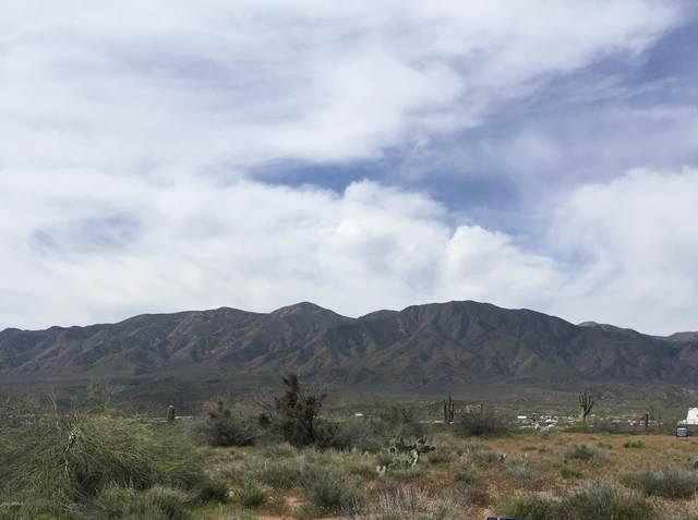 57Q N Riverview Lane, Tonto Basin, AZ 85553 (MLS #6067393) :: The Everest Team at eXp Realty
