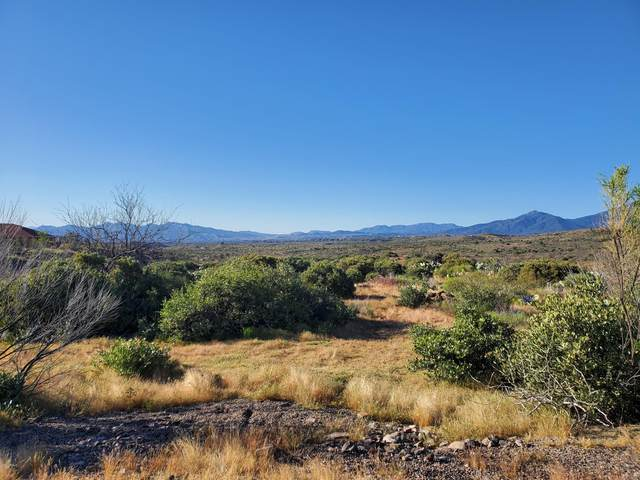 Lot 19 S San Carlos Way, Globe, AZ 85501 (MLS #6067533) :: Howe Realty