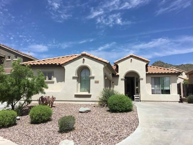 7306 W Palo Brea Lane, Peoria, AZ 85383 (MLS #6067740) :: Howe Realty