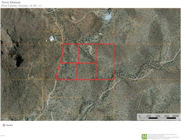 4261 N Elephant Butte Road, Queen Valley, AZ 85118 (MLS #6067798) :: neXGen Real Estate