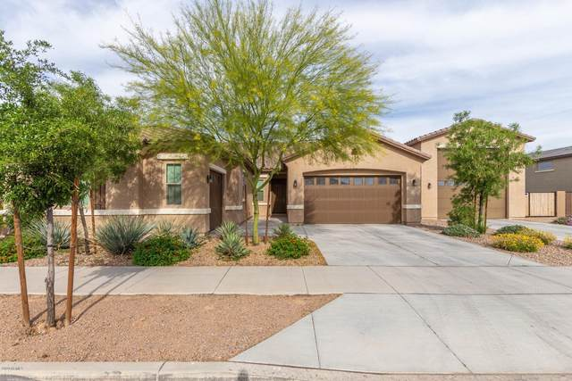 21387 S 219TH Place, Queen Creek, AZ 85142 (MLS #6067870) :: Revelation Real Estate
