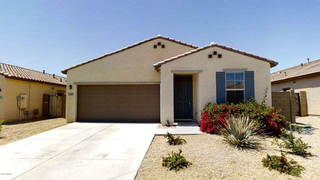 1008 N 169TH Avenue, Goodyear, AZ 85338 (MLS #6068044) :: Kepple Real Estate Group