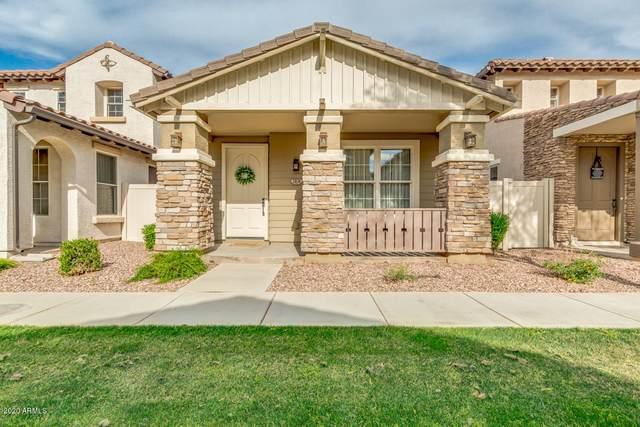 3874 S Winter Lane, Gilbert, AZ 85297 (MLS #6068067) :: Keller Williams Realty Phoenix
