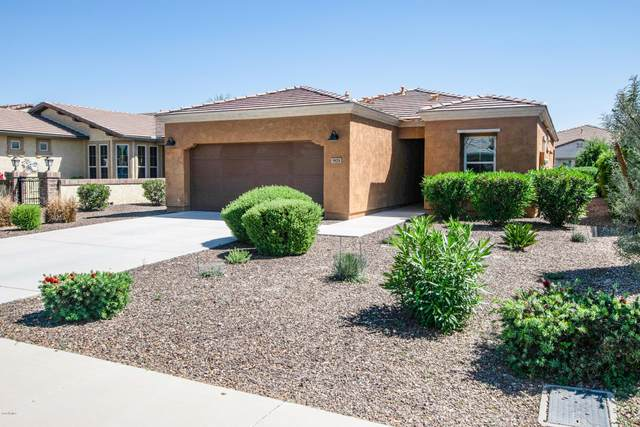 901 E Vesper Trail, San Tan Valley, AZ 85140 (MLS #6068215) :: Balboa Realty