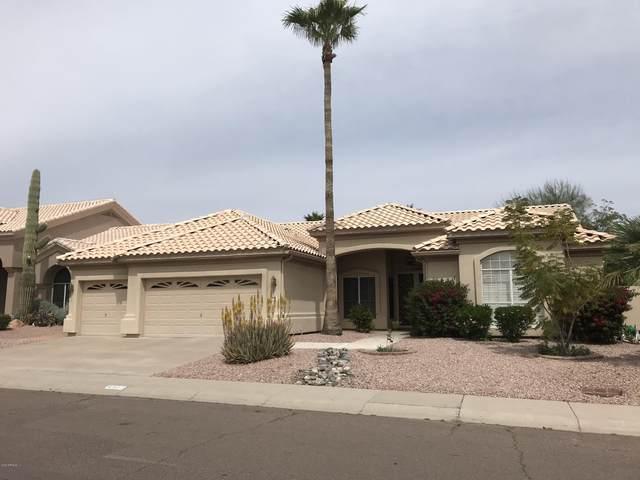 4502 E Desert Trumpet Road, Phoenix, AZ 85044 (MLS #6068245) :: Power Realty Group Model Home Center