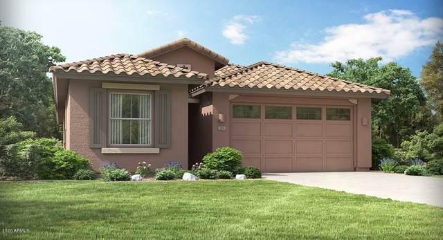 44894 W Rhea Road, Maricopa, AZ 85139 (MLS #6068436) :: REMAX Professionals