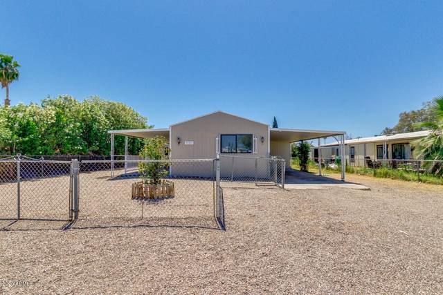9107 E Bramble Avenue, Mesa, AZ 85208 (MLS #6068563) :: My Home Group