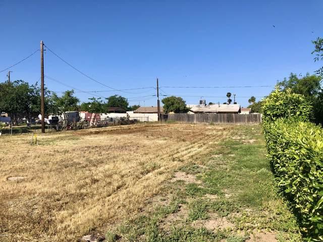 13902 N Primrose Street, El Mirage, AZ 85335 (MLS #6068606) :: NextView Home Professionals, Brokered by eXp Realty