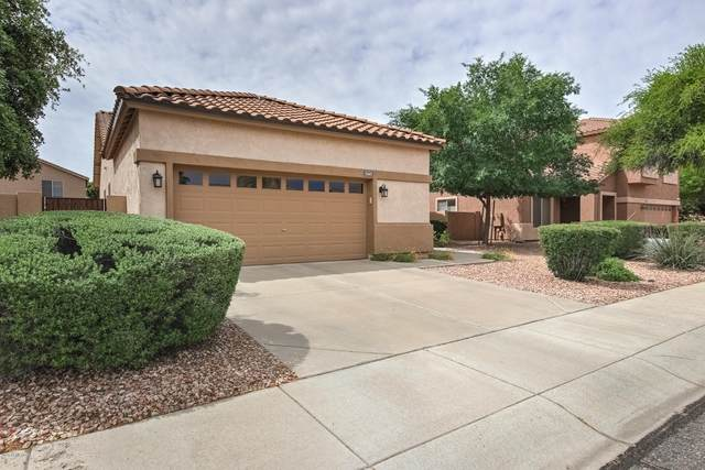 5445 W Buffalo Street, Chandler, AZ 85226 (MLS #6068704) :: Lux Home Group at  Keller Williams Realty Phoenix